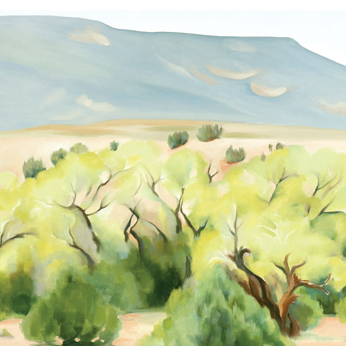abstract desert bushes